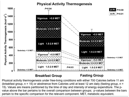 breakfast affects physical activity