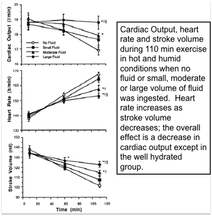 effect of exercise on cardia output Preload is determined largely by cardiac during submaximal exercise, cardiac output cardiovascular effects of pregnancy cardiac output.