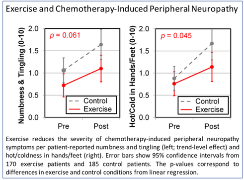 Exercise reduces the severity of chemotherapy-induced peripheral neuropathy symptoms per patient-reported numbness and tingling (left; trend-level effect) and hot/coldness in hands/feet (right). Error bars show 95% confidence intervals from 170 exercise patients and 185 control patients. The p-values correspond to differences in exercise and control conditions from linear regression.