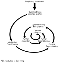 the spiral of exercise and dyspnea in COPD patients